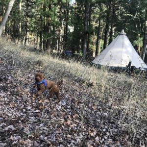 「緊急事態宣言地域のキャンプ客お断り」というキャンプ場の判断は正しい?