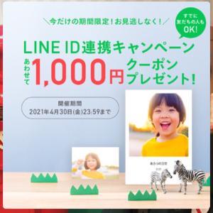 ☆しまうまプリントのキャンペーン