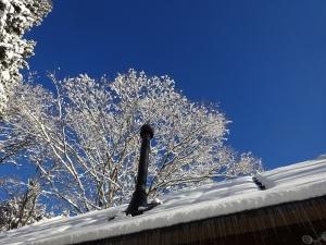 雪は後が大変です