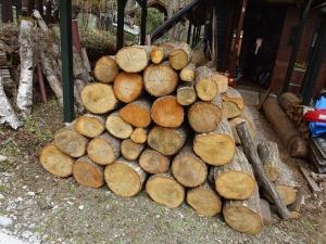 春の薪仕事