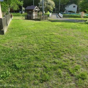 草刈りひと段落