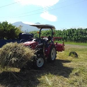 草堆肥、トラクターで収穫~