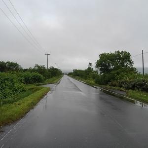 車内観察と雨で歩けず・・・