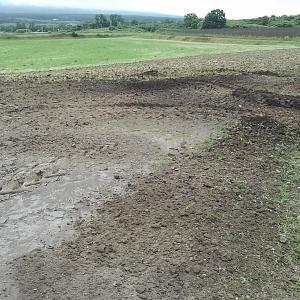 新しい畑の整地作業開始・・・