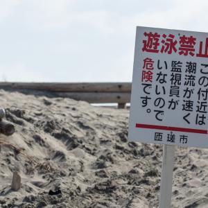 2020/02/24 野手浜