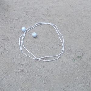 グランドゴルフ(?)/森の教室