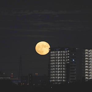 中秋の名月 ---2021---
