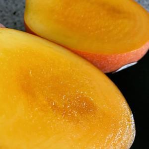 〓 大好きマンゴー‼️台湾マンゴー最強‼️