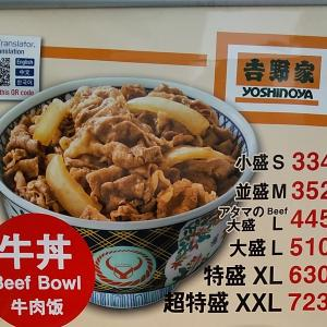 牛丼チェーンでの食事