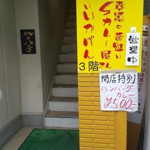 幸福の黄色いカレー屋さん いいかげん@川越新富町