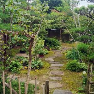 稲美町の庭・・・その後