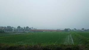 各地の猛烈な雨