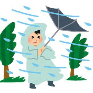 台風、そして台風