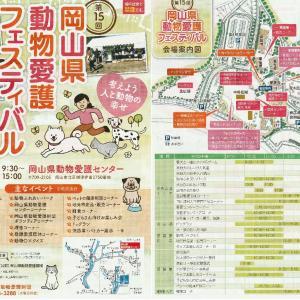 10月27日(日)岡山県動物愛護センター祭り