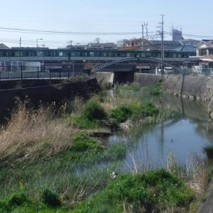 堰堤を避けて京阪電車を潜って歩く