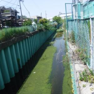 第2京阪潜って岡部川と合流