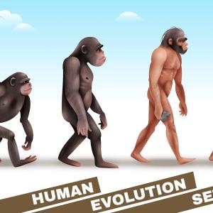 人類進化の理由も多様性にあり。人とのつながりが人類に進化をもたらした!
