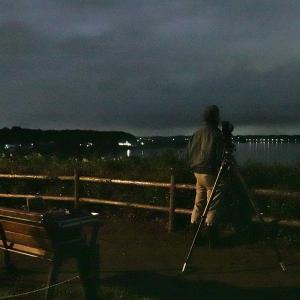 じっと夜明けの沼を眺めていたMさん