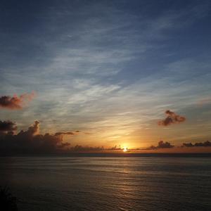 宮古島と石垣島 サンゴと海