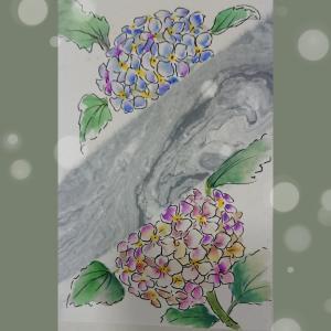 マーブルと紫陽花