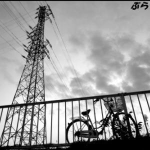 夕陽に似合う自転車のシルエット