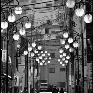 商店街の街灯が逆光でキラキラだ