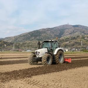 ランボルギーニトラクターにて耕運作業