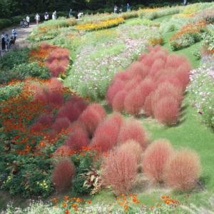 里山ガーデン、、⑵