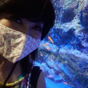 ■深海生物展示数日本一の竹島水族館へ〜定休日の過ごし方〜