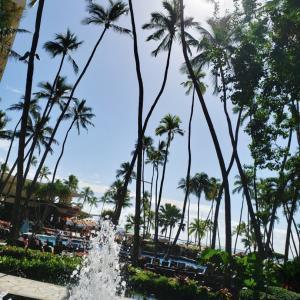 何年経ってもハワイでしてること