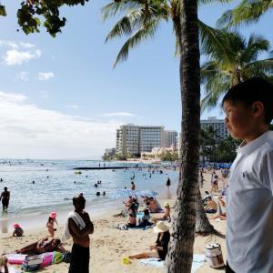 ハワイに人が戻ってきた❢