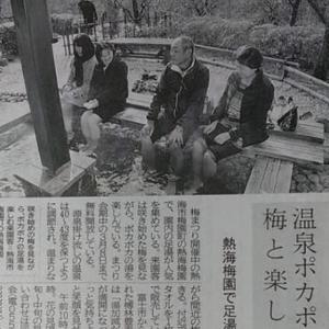 伊豆新聞掲載=温泉ポカポカ 梅と楽しむ