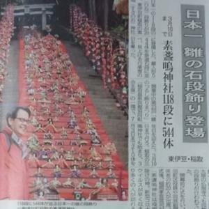 伊豆新聞掲載=日本一 雛の石段飾り登場