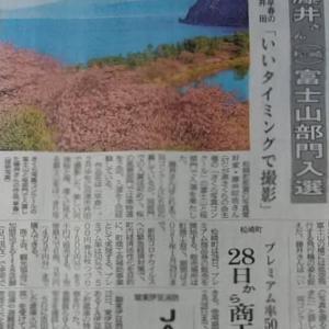 伊豆新聞掲載=藤井さん 富士山部門入選