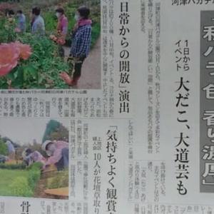 伊豆新聞掲載=「秋バラ 色、香り濃厚」