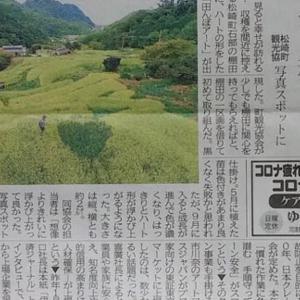 伊豆新聞掲載=石部の棚田にハート形アート