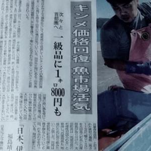伊豆新聞掲載=キンメ価格回復 魚市場活気