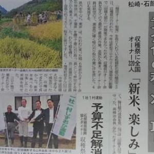 伊豆新聞掲載=黄金色の稲、刈り取り
