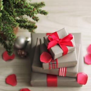 新常識!クリスマスを飾るのはもみの木だけではない!!!