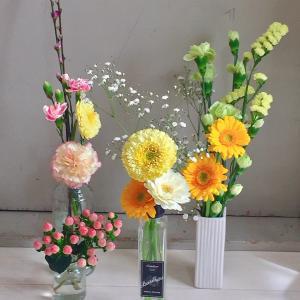 五月雨雑記:生存確認。春はお花と確定申告。