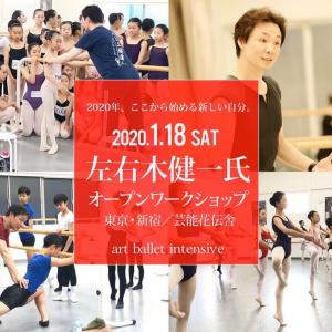 来年の art ballet intensive