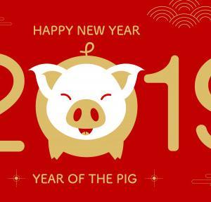 2019 HAPPY NEWYEAR !!