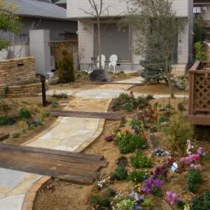 庭10年での驚くべき変化