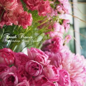 季節のお花を楽しむ茶話会開催します♪