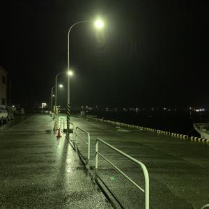 【城ヶ島・三崎港・北条湾】雨が強過ぎて釣りは断念しました(2020年1月26日)