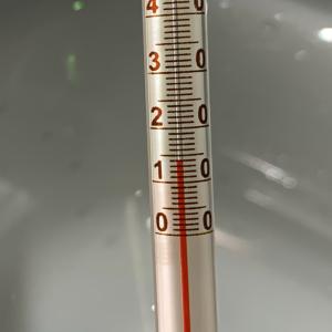 【城ヶ島・三崎港・北条湾】暖かい日が多くなってきましたが海の中はまだ冬でした(2020年3月22日)