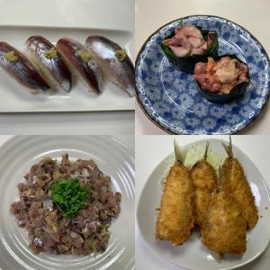 【城ヶ島・三崎港・北条湾】成魚サイズのマイワシ入れ食い!(2021年1月17日)