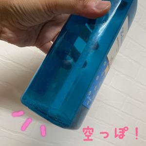 *また来年~…(*´ー`*)ノ*