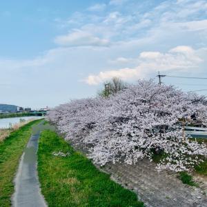 *<随時更新>4月のご予約可能日o(^▽^)o*