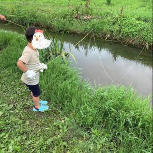 ザリガニ釣りにハマりそう♪